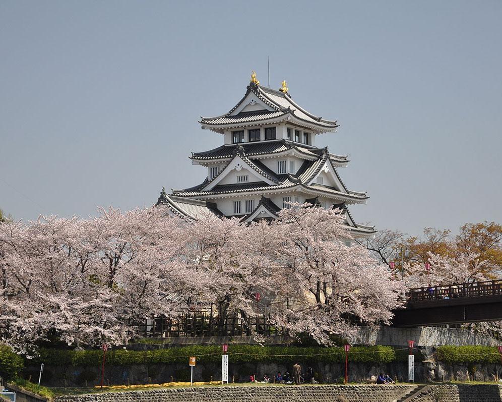 秀吉由来の城と桜の見事な絶景、岐阜県大垣市の墨俣一夜城・犀川堤の桜の見頃はいつ?