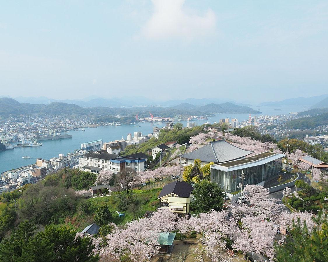 尾道市内を一望できる公園で桜を満喫!広島県尾道市の千光寺公園の桜はいつが見頃?