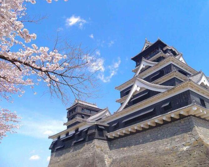 熊本のシンボルも桜の季節、熊本県熊本市の熊本城の桜はいつが見頃?