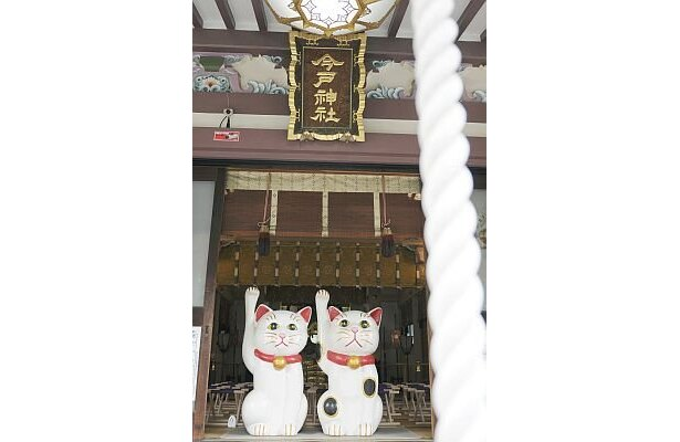 今戸神社の境内には、大小さまざまな招き猫が点在。右手をあげている白猫は人との縁を授け、左手をあげている白猫は小槌を持ってお金を招くといわれる