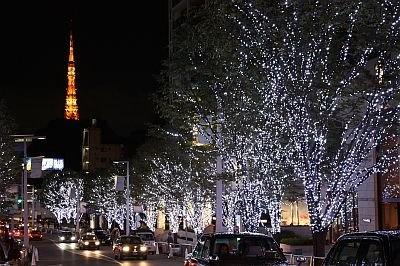 米倉さんが大好きだという、六本木けやき坂通りのイルミネーション