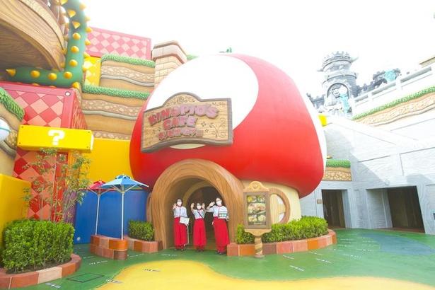 特製キノコ料理が味わえる「キノピオ・カフェ」。外観からは想像しにくいが、店内は広々とした空間に
