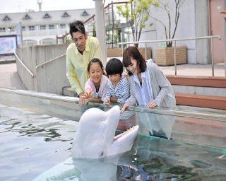 関東の動物園・水族館を徹底攻略記!【コロナ対策情報付き】