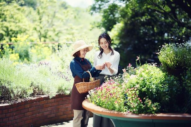 約100種のハーブがあるハーブミュージアムで、ハーブの活⽤法や栽培法を紹介する「ハーブガイドツアー」