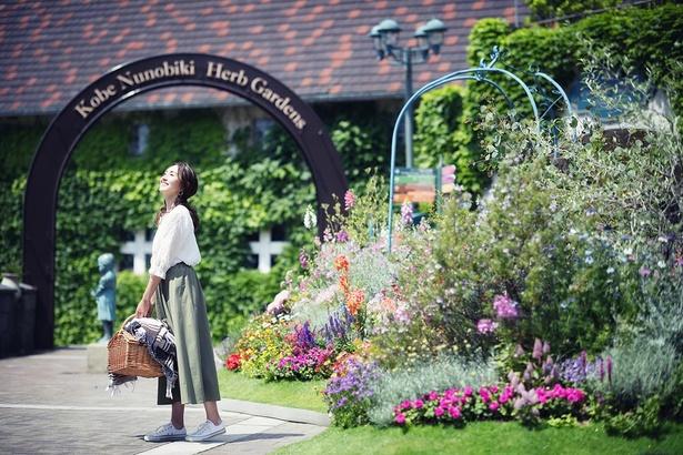 ハーブガーデンが最も美しい季節に「GARDEN FEST 2021 - Spring -」が開催