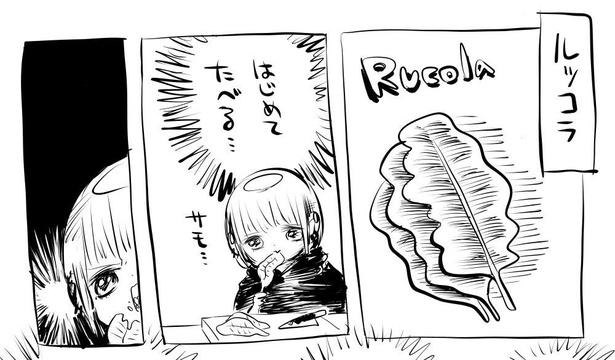 「ルッコラをはじめて食べた」1