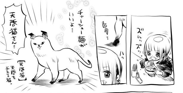 「チャーシュー麺ダイエット1」1