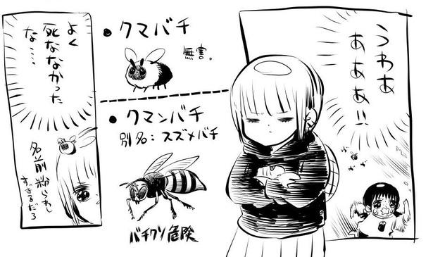 「高校までクマバチを恐れて生きてた」3