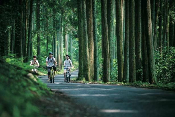 古くから白山信仰で知られ、手付かずの自然が残る岐阜県郡上市。サイクリングやラフティング、スキーなど四季折々の楽しみがある