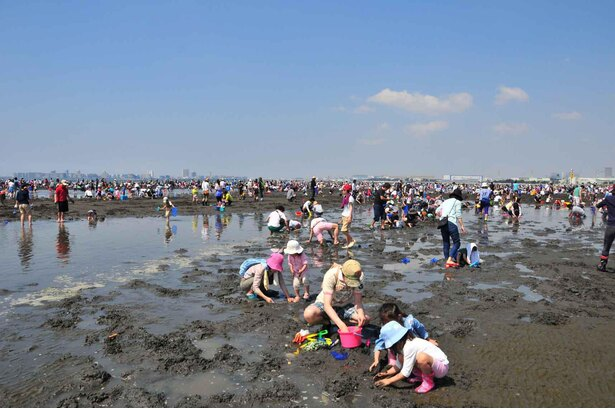 東京湾の豊かな恵みを見ながらおいしいアサリを探そう!