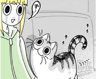 """""""気分屋な猫""""を描いた漫画に共感「猫と段ボールの関係」"""