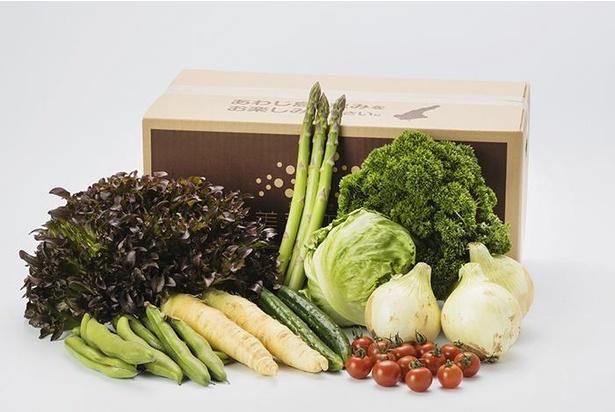 お取り寄せでも人気の「JA全農兵庫 ほんまもん淡路島野菜BOX(小)」。淡路島たまねぎなど旬の野菜入り