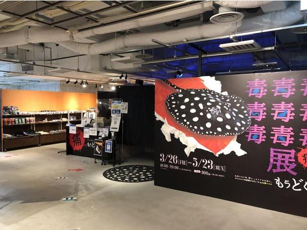黒と差し色の赤が毒々しい印象を与える展示会場のデザイン