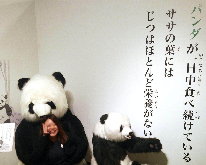 等身大ぬいぐるみは迫力満点、鳥取県境港市で「ざんねんないきもの事典inSANKO夢みなとタワー」開催