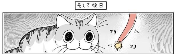 「紐にじゃれるネコ」04