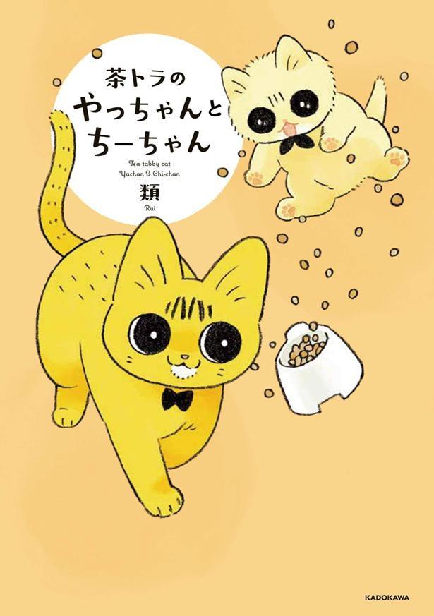 『茶トラのやっちゃんとちーちゃん』