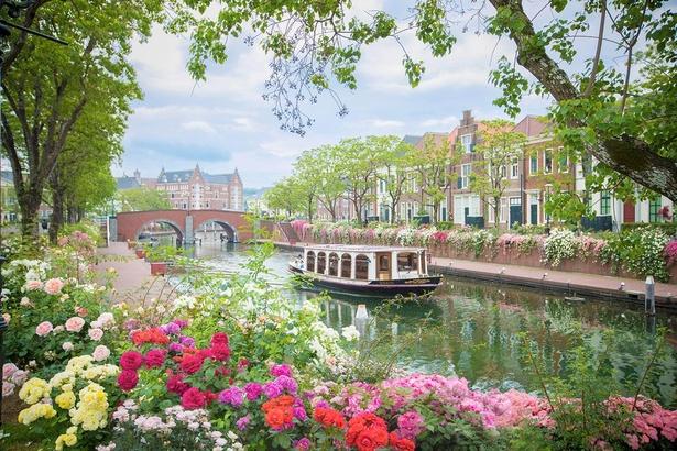 【写真】水の流れとバラが織りなす絶景が楽しめる「バラの運河」