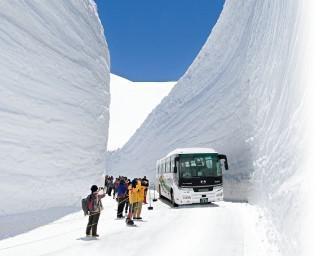 高さ20メートルの雪の壁は圧巻!富山県中新川郡立山町で「2021完全再現!雪の大谷メモリアルウォーク」が開催中