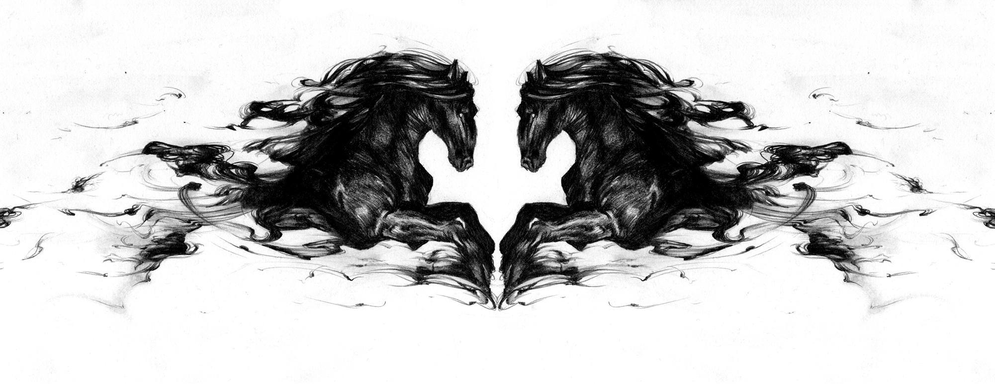 「無題」。向き合う馬から感じる躍動感に、つい時間を忘れてしまう