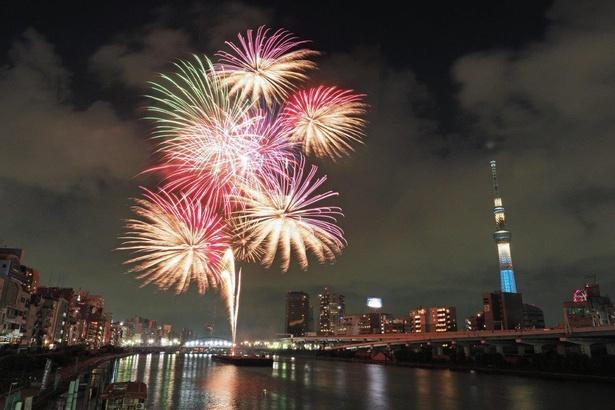 隅田川花火大会の様子。完成度に定評がある美しいスターマイン