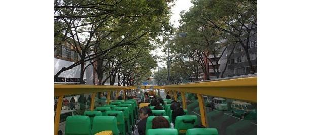 表参道を走るオープンバス。広がる空、空気、におい、音など、景色だけでなく感じる部分もいっぱい!