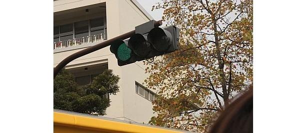 【写真で見るオープンバスツアー】信号が近いっ!