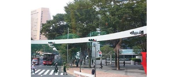 新宿アイランドタワー前の交差点では、ぐるっと円状に取り囲む信号機に遭遇!