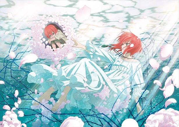 「魔法使いの嫁」がテレビアニメ化決定!10月から2クールで放送