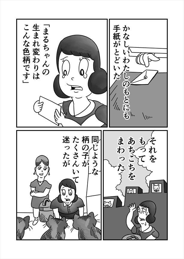 「うまれかわらない」(4/12)