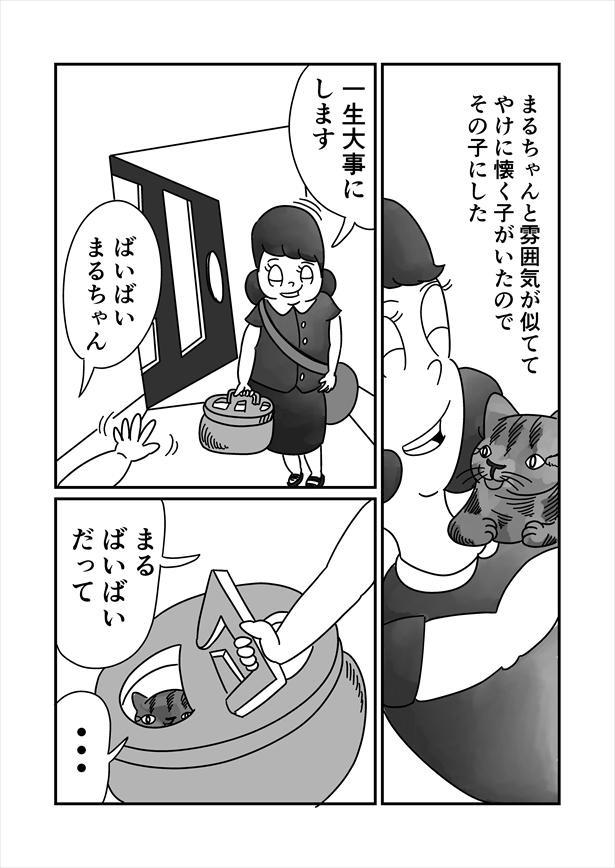 「うまれかわらない」(5/12)