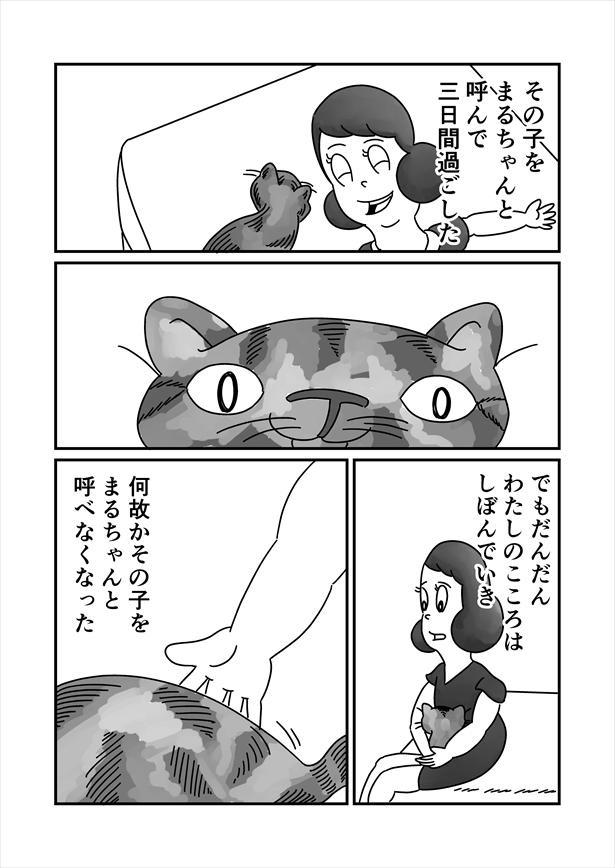 「うまれかわらない」(6/12)
