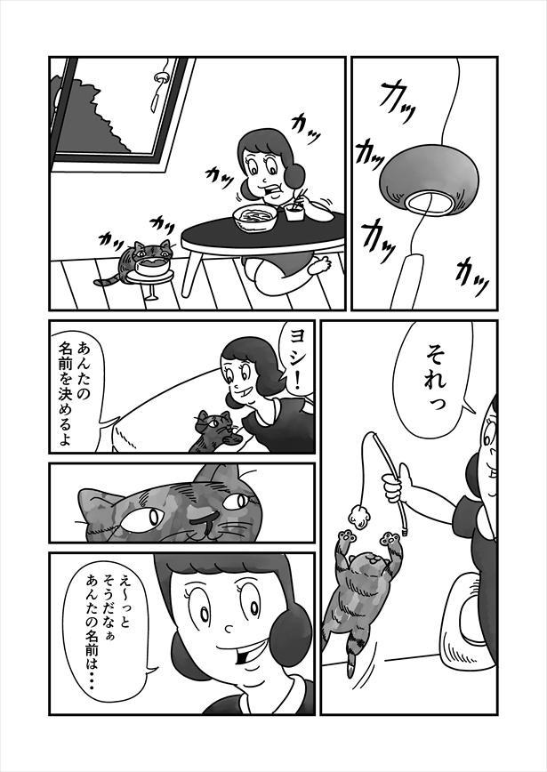 「うまれかわらない」(11/12)