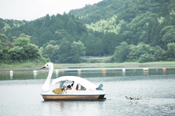 ペダルボート(3人乗り1500円/30分)で、のんびり池を楽しもう