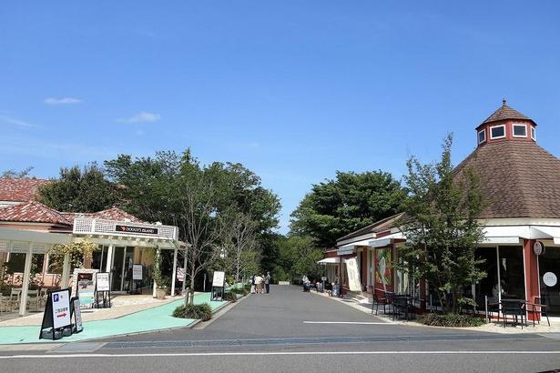 ショップやレストランなどが並ぶメインストリート