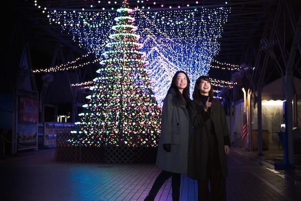 まるでNY!? ポップなクリスマスツリーは高さ約6m