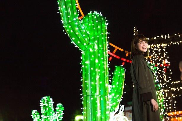 大きなサボテンがインパクト大!の「メキシコ」エリア