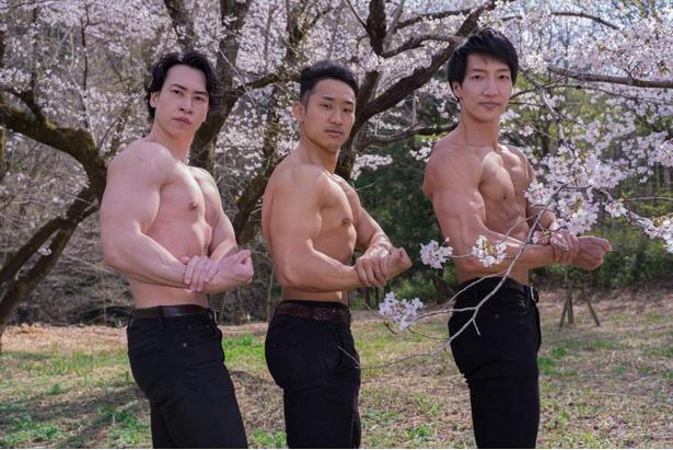 【桜とマッチョ】桜とマッチョ。桜の下で鍛え上げた二の腕をアピール