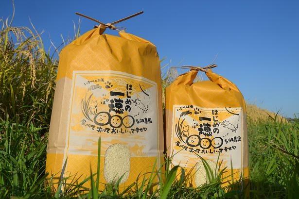 はじめの一穂と名付けられた「多湖農園」の米。ミルキークイーンは精米10kg5139円(送料別途)。水を少なめに炊くと◎