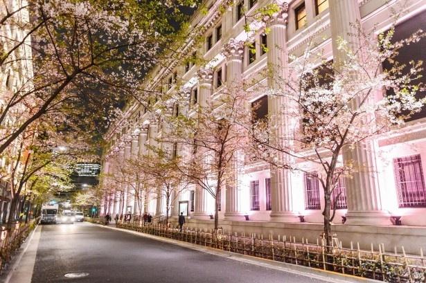 重要文化財の三井本館が幻想的にライトアップされる