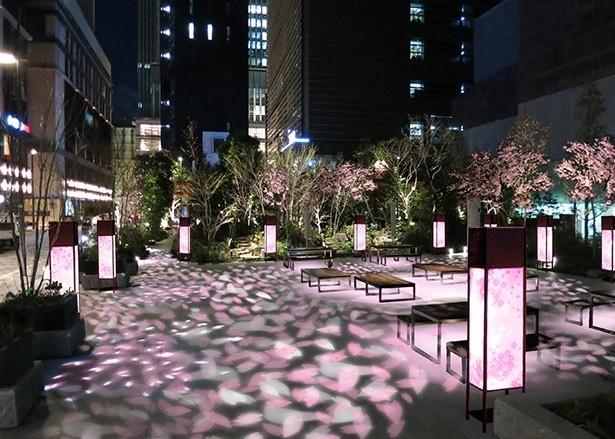 イべントスペース「福徳の森」は、桜の花びらを模したライティングが施される