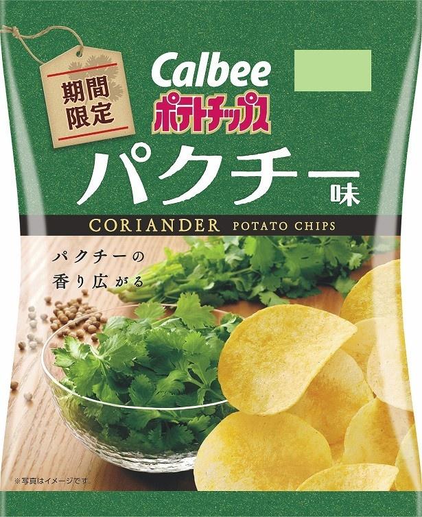 「ポテトチップス パクチー味」(想定価格150円前後)
