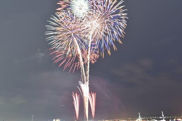 【写真】横浜市18区でシークレット花火が1分間同時に打ち上げられた