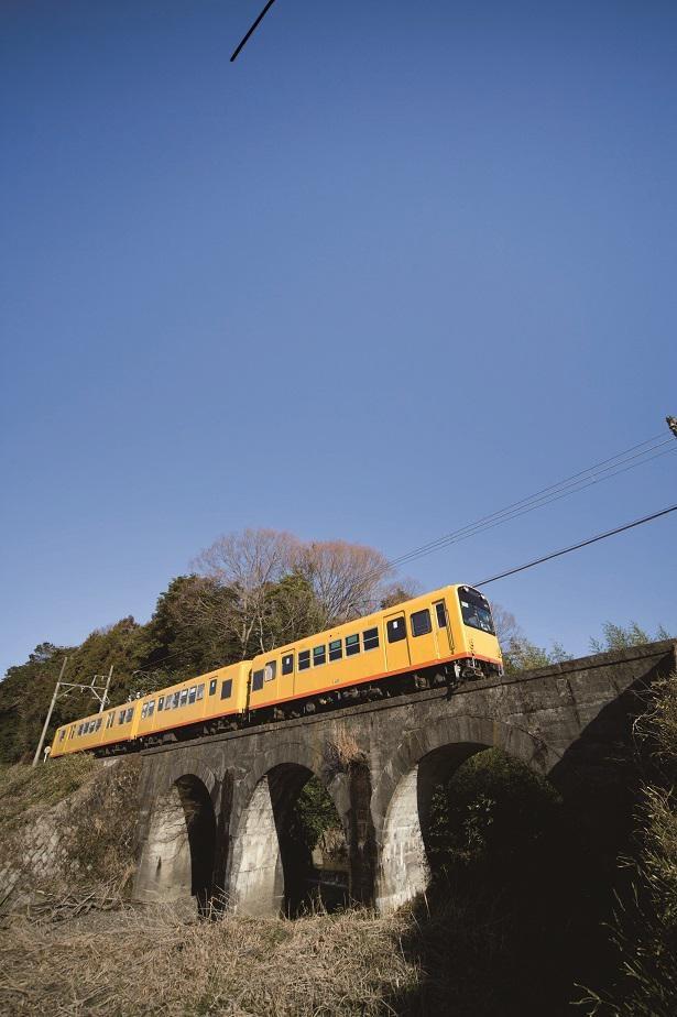 北勢線は3~4車両で編成。黄色いカラーリングが景色に映える