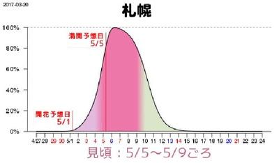 札幌の満開予想日は5月5日(金)、GWの真っ只中だ