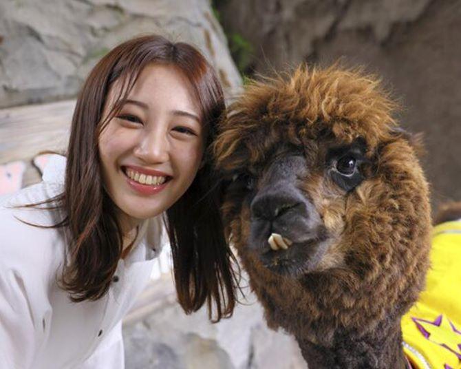 NMB48・南羽諒の動物愛が爆発!ラクダやアルパカと超密着の第1回「はあさのハッピーあにまる図鑑」