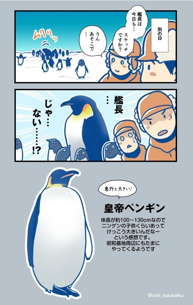 「ふじ」艦長がペンギンのスケッチをすると…(2/2)