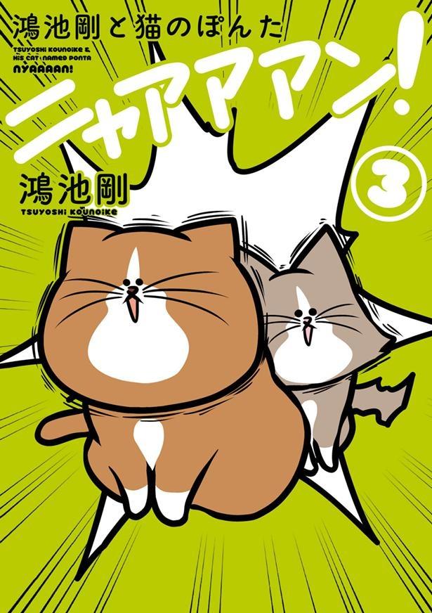 『鴻池剛と猫のぽんた ニャアアアン! 3』