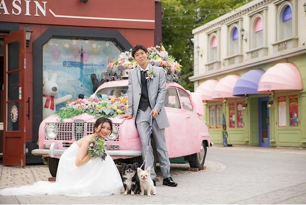 愛犬とウエディングフォトが撮れる