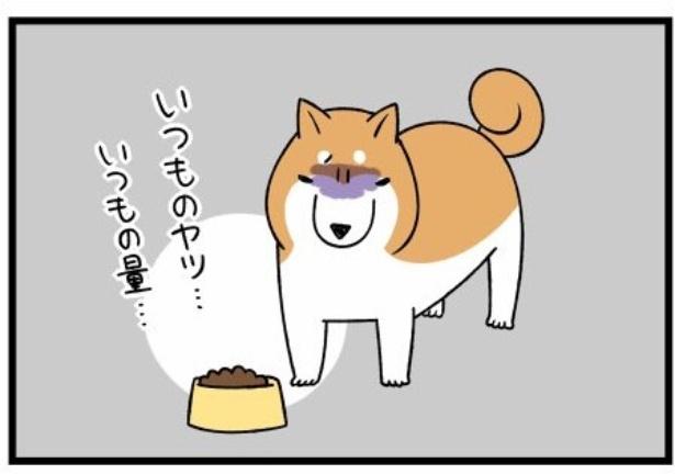換毛期シリーズ「メニューにうるさい柴犬」2。続きを読むときは画像をクリック!