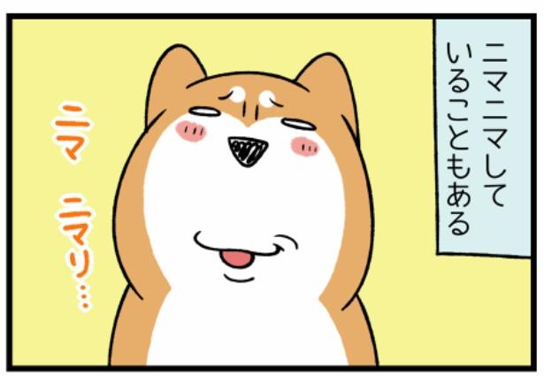 どんぐりの性格シリーズ「犬の表情」2。続きを読むときは画像をクリック!